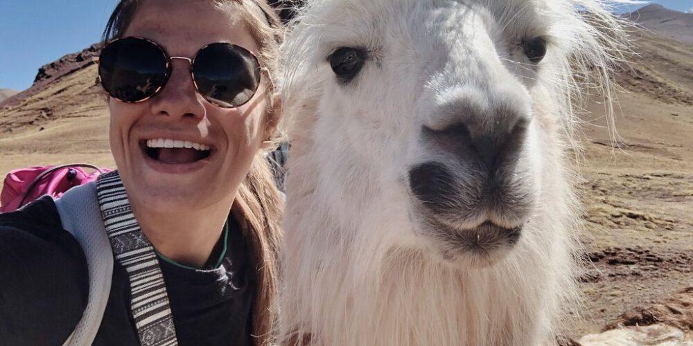 Llama in Ausangate and rainbow mountain trek 7 days