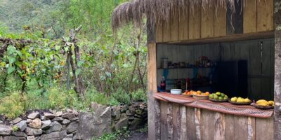 A little food in the jungle, without a doubt the 4-day salkantay trek has a lot to offer