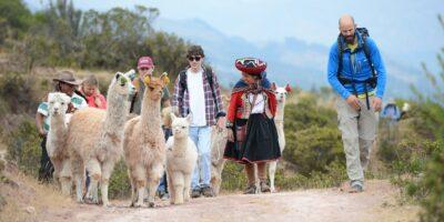 Walking alongside the Llamas