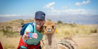 Beautiful photo with the Llama In Huchuy Qosqo