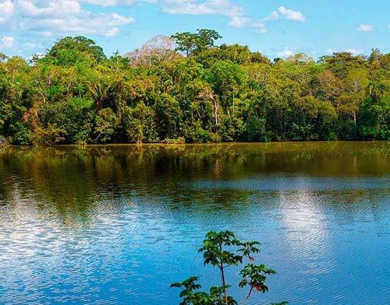 Manu Biosphere