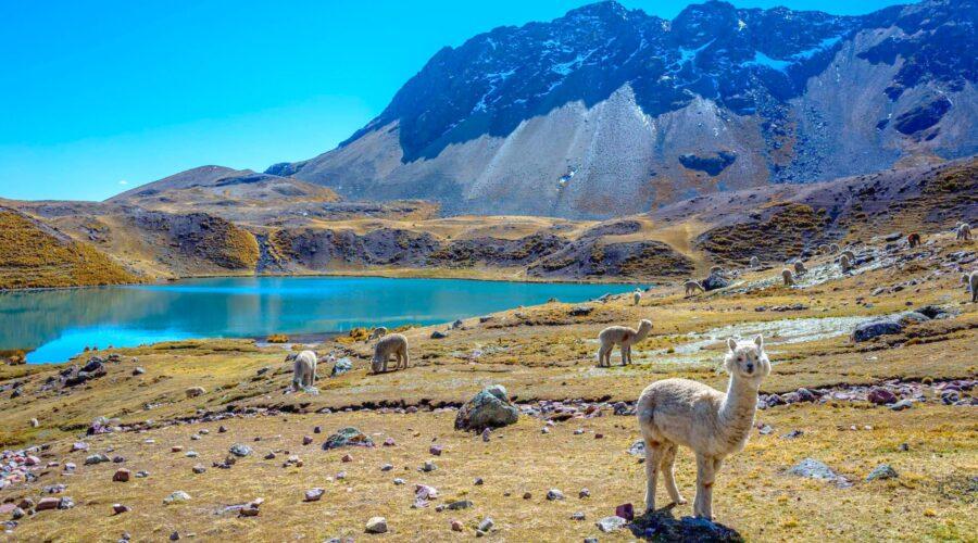 Rainbow Mountain And Ausangate Trek To Machu Picchu 3 Days