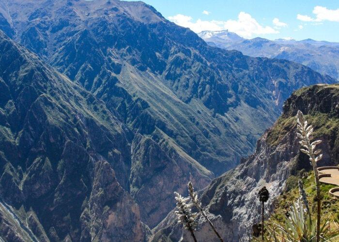 Colca Canyon Day Tour