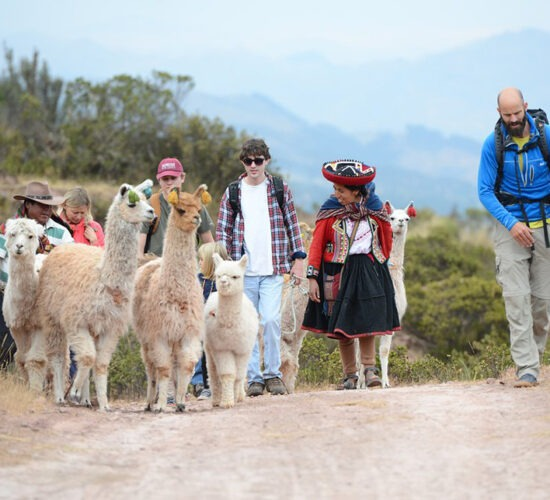 We are going to huchuy qosqo accompanied by llamas and Andean women with typical costume