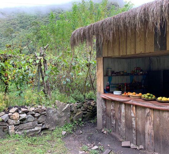 on the salkantay trek we enjoy fresh fruits on the 3rd day